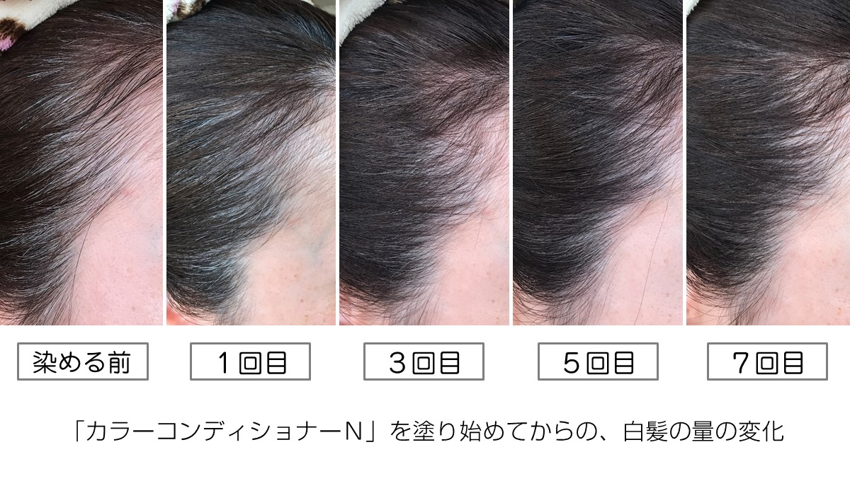 カラーコンディショナーNを塗り始めてからの、白髪の量の変化3