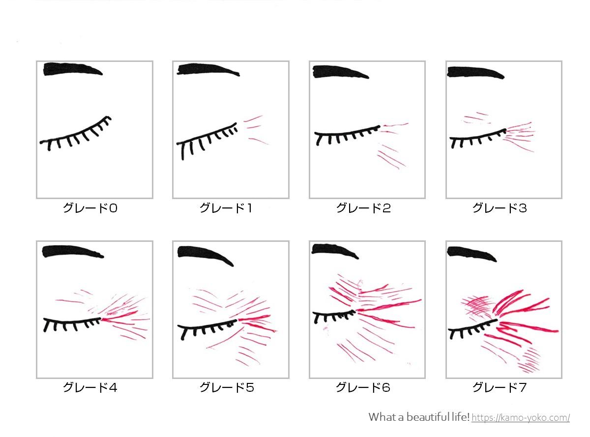 日本香粧品学会シワガイドライン